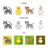 Entertainment, farm, pets and other web icon in cartoon,flat,monochrome style. Eggs, toy, recreation icons in set stock illustration