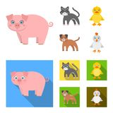 Entertainment, farm, pets and other web icon in cartoon,flat style. Eggs, toy, recreation icons in set collection. vector illustration