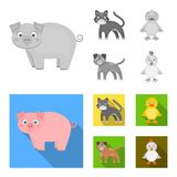 Entertainment, farm, pets and other web icon in monochrome,flat style. Eggs, toy, recreation icons in set collection. royalty free illustration