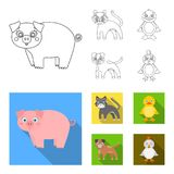Entertainment, farm, pets and other web icon in outline,flat style. Eggs, toy, recreation icons in set collection. vector illustration