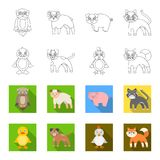 Entertainment, farm, pets and other web icon in outline,flat style. Eggs, toy, recreation icons in set collection. Entertainment, farm, pets and other icon in stock illustration