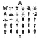 Entertainment, insects, nature and other web icon in black style. filler, dessert, sweetness, icons in set collection. Entertainment, insects, nature and other Stock Image