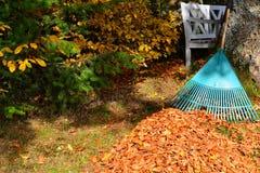 Entfernen von Laub Herbstlaub Stockfotografie