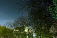 Entfernte weiße Bausteine und Mohnblume Arty Winterbäume lizenzfreie stockfotografie
