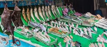 Entgegengesetzt vom Fischgeschäft mit den Waren ausgebreitet in Istanbul, die Türkei stockfotografie