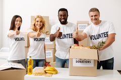 Enthusiastic charity team happy working together. Making a difference. Active motivated generous people looking delighted while gathering around the table and Royalty Free Stock Images