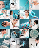 Enthusiastic scientists work in modern biological facility, coll Stock Photos