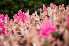 Free Enthusiastic Sports Fans Clapping Hands Royalty Free Stock Photo - 56434585