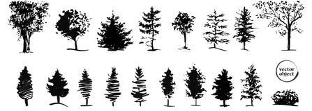 Entinte el ejemplo de árboles crecientes con alguna hierba Fotos de archivo