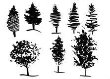 Entinte el ejemplo de árboles crecientes con alguna hierba Silueta aislada en el fondo blanco Fotos de archivo