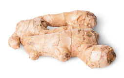 Entire ginger root Stock Images