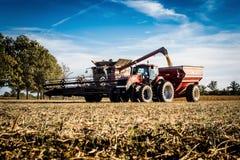 Entladungskorn des Erntemaschinenmähdreschers in einen Lastwagen während der Sojabohnenernte in Illinois lizenzfreies stockfoto