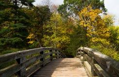 Entlang der Holzbrücke Stockbild