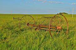 Entleeren Sie Rührstange in das lange Gras eines Graslands Lizenzfreies Stockfoto