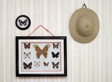 Entomologist trophy Royalty Free Stock Image