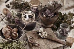 Entonado cerca para arriba con la vela negra, las setas, el diario y las hierbas curativas Imagen de archivo