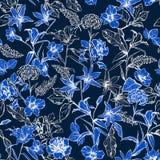 Entoniga nya blåa botaniska blommor i det trädgårds- hand drog bet vektor illustrationer