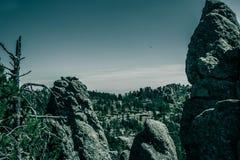 Entonigt berglandskap på Black Hills Soth Dakota, USA arkivfoton