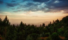 Entoto Maryam Kościelny Addis Ababa Etiopia Fotografia Royalty Free