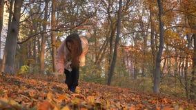 Entourer autour du portrait de la jeune femme aux cheveux bouclés caucasienne marchant en parc automnal et collecte des feuilles clips vidéos