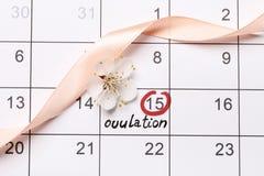 Entourer la date essayant d'avoir le calendrier de b?b photographie stock
