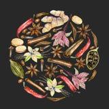 Entourez l'illustration des épices d'aquarelle cannelle, anis, cumin, cardamome, basilic, poivron rouge, gingembre, vanille et cl Images libres de droits