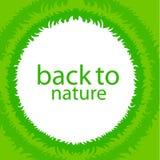 Entourez le cadre d'herbe verte avec l'espace de copie sur le fond blanc Photographie stock