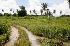 Entrée à l'agricole photos libres de droits