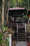 Entrée à la forêt Image libre de droits