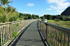 Entrée à la plage de Piha, Nouvelle Zélande images libres de droits
