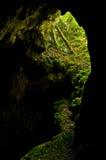 Entrée célèbre de caverne au parc national de Semenic Image stock