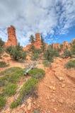 Entrée de Bryce Canyon Photos libres de droits