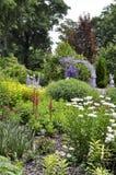 Entrée de jardin colorée par lavande Photographie stock libre de droits
