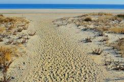 Entrée de plage Image libre de droits