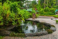 Entrée principale du centre de réadaptation d'Utan d'orang-outan décrit Sandakan Sabah Malaysia Photographie stock