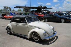 Entraînement classique de scarabée Image stock