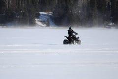 Entraînement d'un quadruple en hiver Photos stock