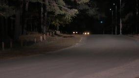 Entraînement dangereux sur la route de nuit banque de vidéos