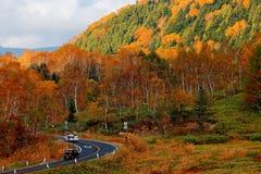 Entraînement de voitures sur un enroulement de route de montagne par les forêts colorées par le flanc de coteau photo stock