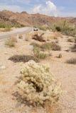 Entraînement par le désert en Californie USA Images stock