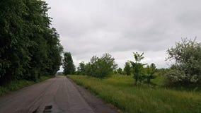 Entraîner une réduction une route de mère patrie pendant l'été de ressort Vieille route goudronnée conduisant dans l'entraînement clips vidéos
