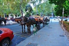 Entraîneur à Barcelone photographie stock libre de droits
