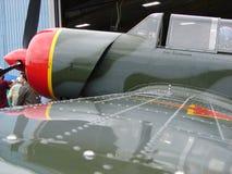 Entraîneur acrobatique aérien russe admirablement reconstitué de Yak-52TW photographie stock libre de droits