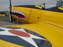 Entraîneur admirablement reconstitué de WWII Fairchild Pt-19 photo libre de droits