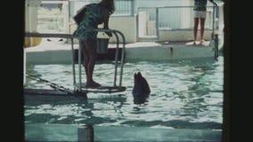 Entraîneur And Dolphin Interacting banque de vidéos
