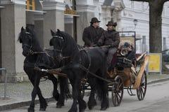 Entraîneur et chevaux Photos libres de droits