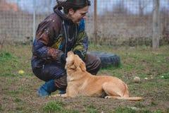 Entraîneur et son chien en cours de socialisation Image libre de droits