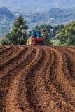 Entraîneur sur le gisement de pomme de terre Photos stock