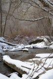 Entra o córrego do inverno Fotos de Stock Royalty Free