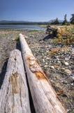 Entra uma praia da costa oeste Imagem de Stock Royalty Free